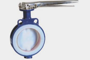 Wafer Type Lined Butterfly Valve